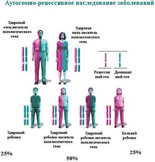Применения гепатопротекторы при гепатите вирусный